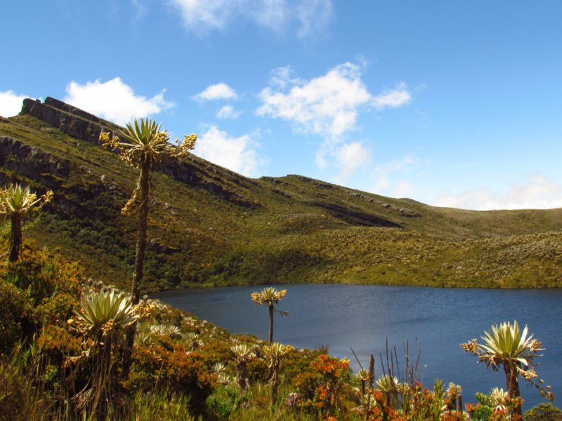 Andes mountains cycling tours
