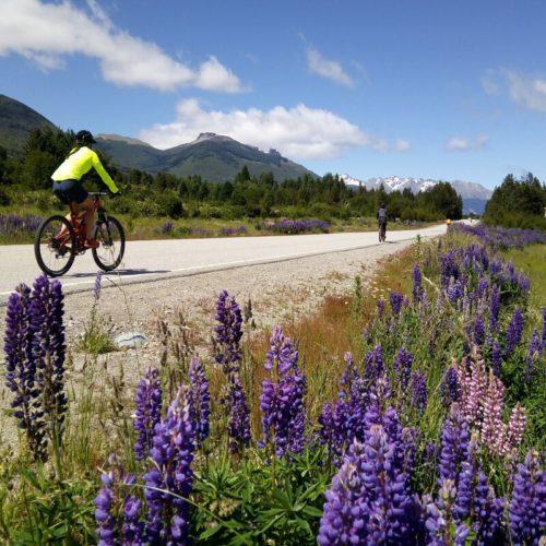 Cycling 7 lakes Patagonia Argentina